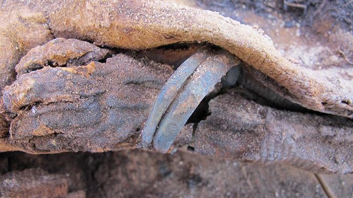 Egypt-million-mummies-discovered.si