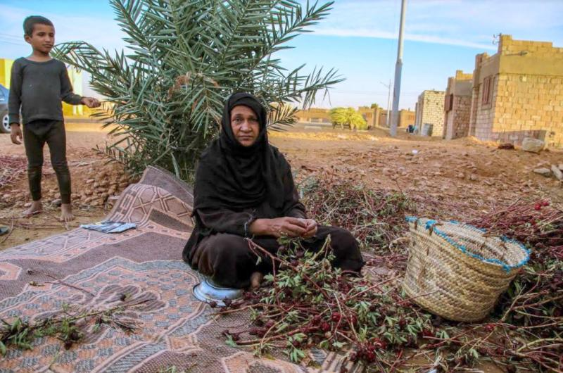 A-resident-of-Samaha-Village-working-in-the-field-Foto-courtesy-of-Agriculture-Ministry